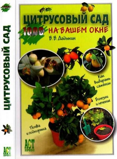 Цитрусовый сад на вашем окне / В.В. Дадыкин / 2006