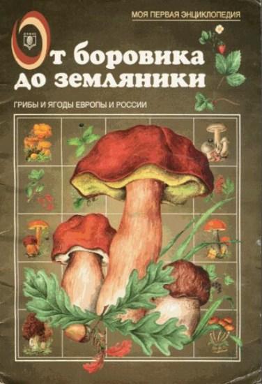 От боровика до земляники / Маталин А.В. / 1999